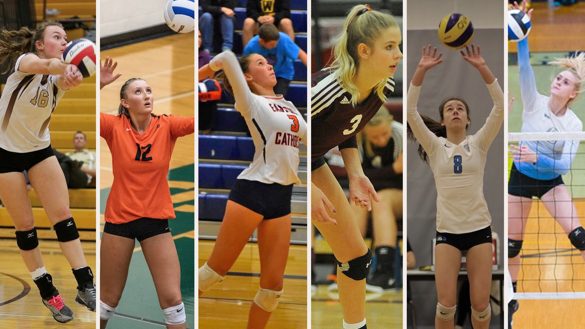 Volleyball Adds 6 On National Signing Day University Of Montana Athletics